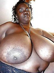 Ebony bbw, Bbw ebony, Big, Ebony boobs