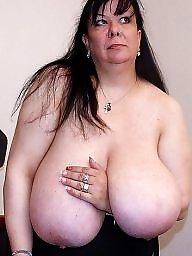 Tits, Big tit, Amateurs, Amateur boobs