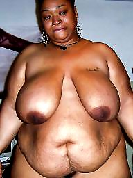 Asian, Black bbw, Latina bbw, Bbw asian, Latinas, Bbw ebony