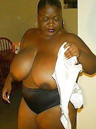 Boobs, Bbw ebony, Blacked, Big black