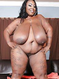 Ebony bbw, Bbw ebony, Ebony tits