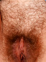 Mature amateur, Mature hairy, Mature pussy
