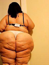 Bbw ass, Bbw big ass